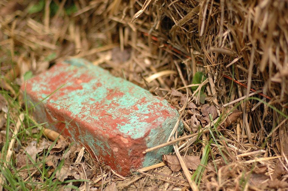 A single brick in hay : Free Stock Photo