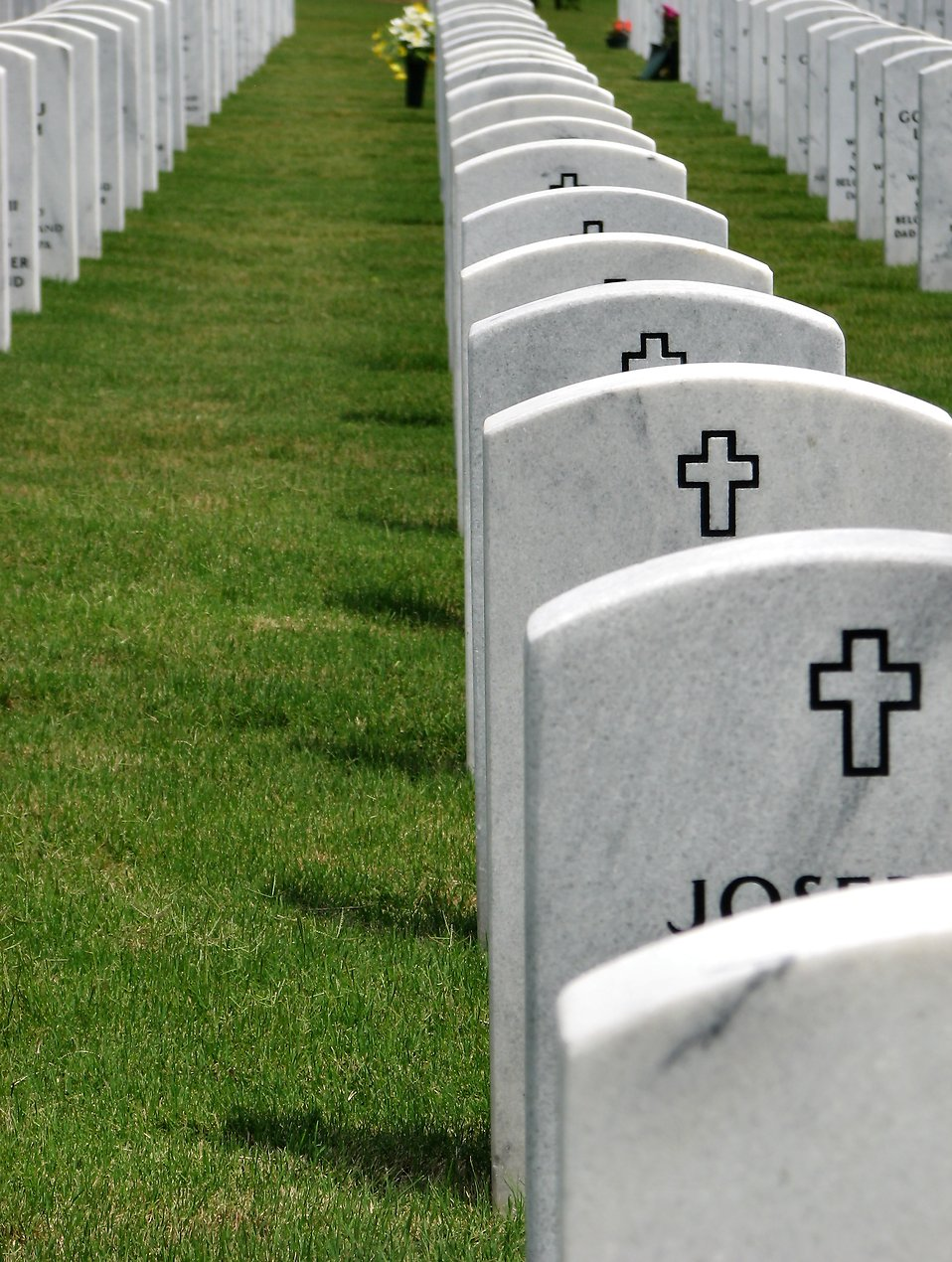 Close-up of gravestones in a row at the Georgia National Cemetery : Free Stock Photo