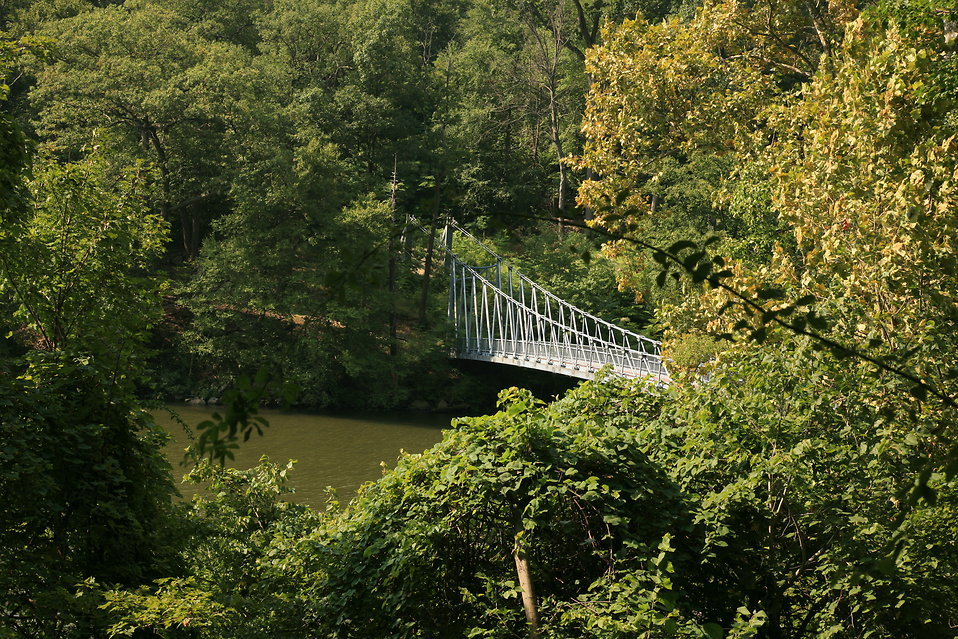 Walking bridge overlook : Free Stock Photo