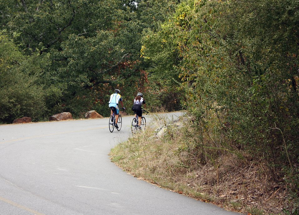 A couple bike riding on a road surrounded by trees in early Autumn : Free Stock Photo