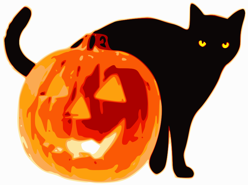 Illustration of a jack-o-lantern and a black cat : Free Stock Photo