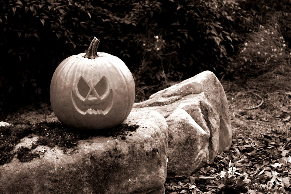A Halloween jack-o-lantern on a rock : Free Stock Photo