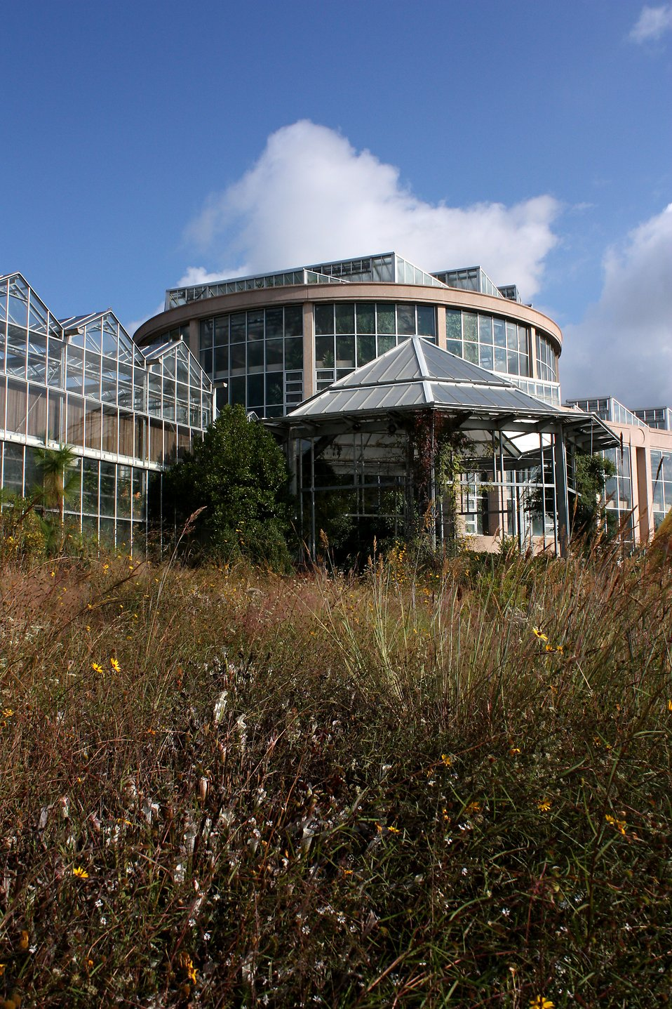 The Dorothy Chapman Fuqua Conservatory at the Atlanta Botanical Garden in Atlanta, Georgia : Free Stock Photo