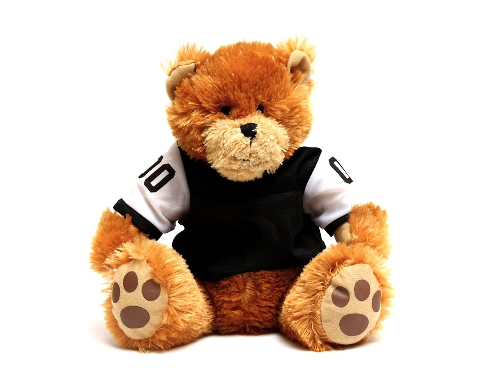A teddy bear in a football jersey : Free Stock Photo