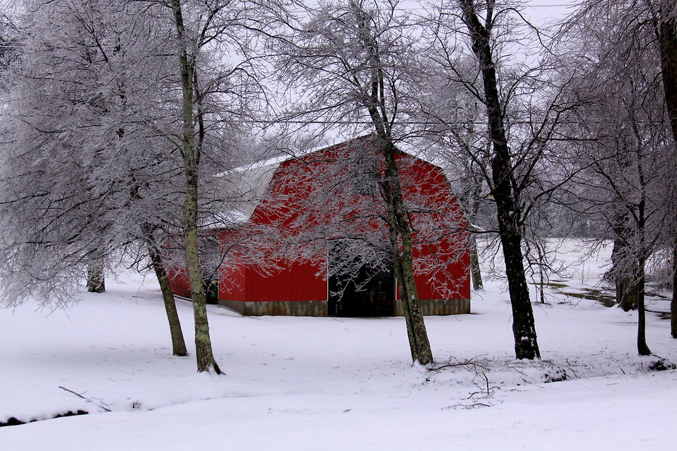A red barn surrounded by snow : Free Stock Photo