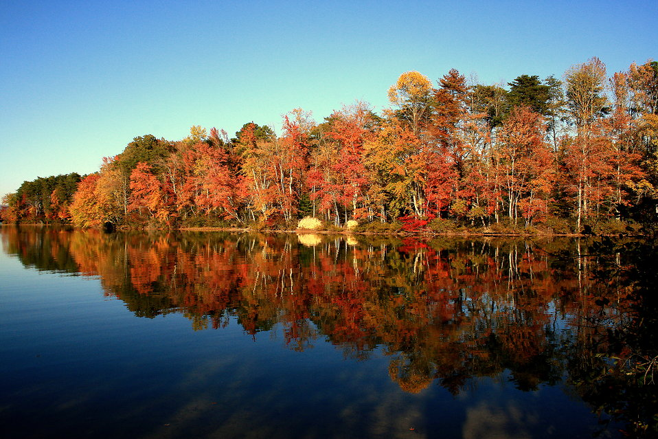 Fall landscape reflecting on a lake : Free Stock Photo