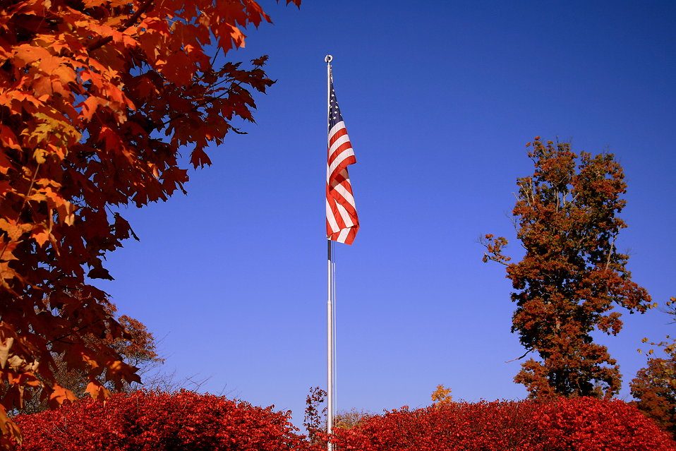 A United States flag surrounded by autumn trees : Free Stock Photo