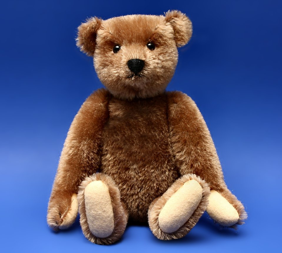 A teddy bear isolated on a blue background : Free Stock Photo