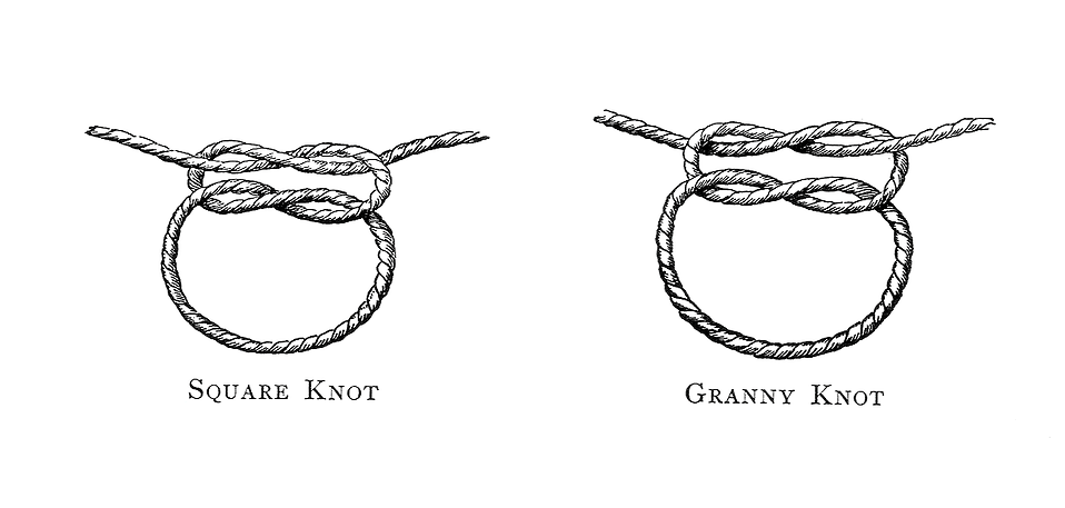 Vintage illustration of knots : Free Stock Photo