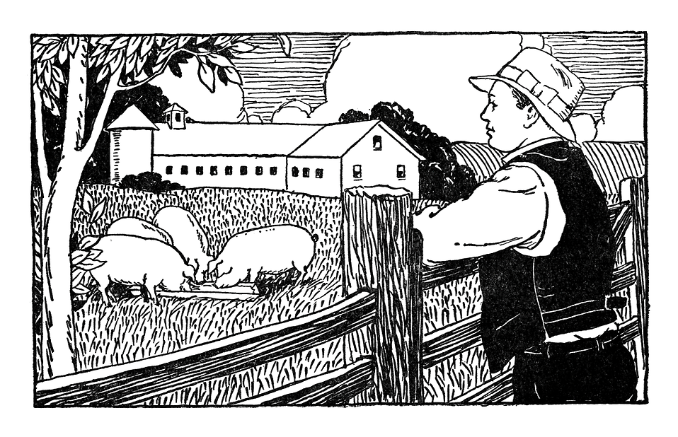 Vintage illustration of a famer looking over pigs on his farm : Free Stock Photo