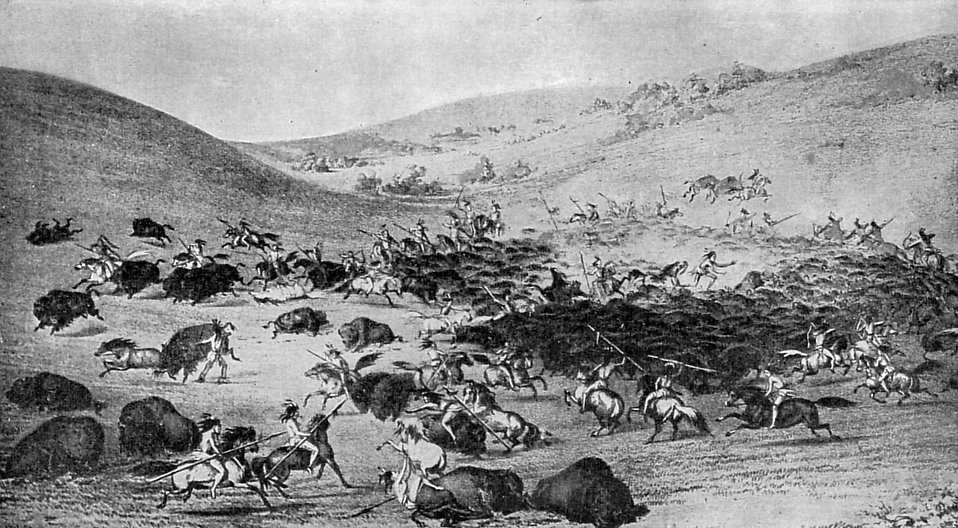 Illustration of an American Indian buffalo hunt in the west : Free Stock Photo