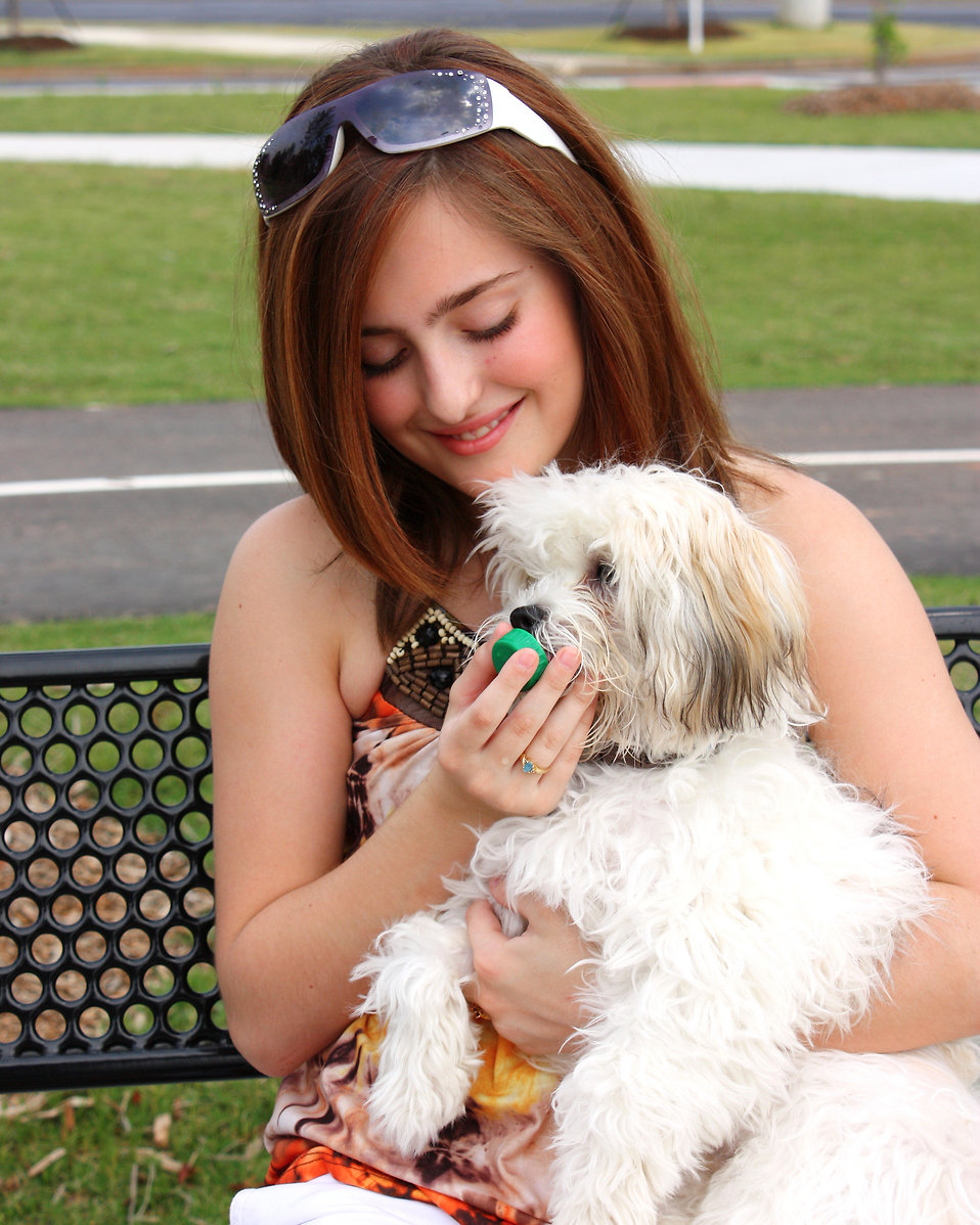 A young girl feeding water to a small dog : Free Stock Photo