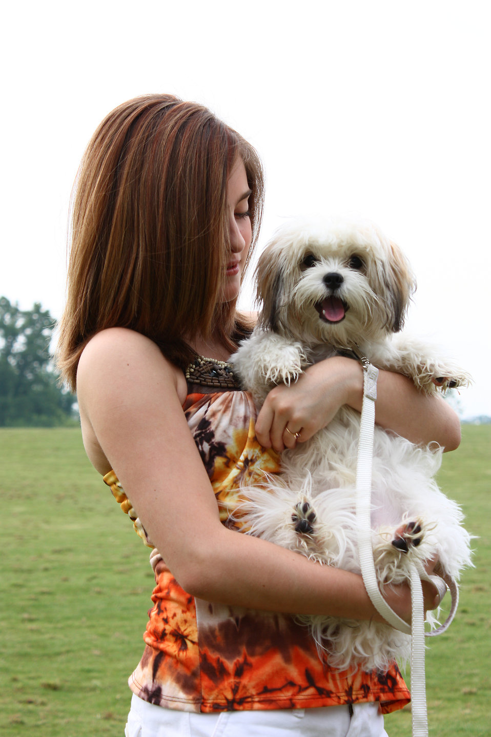 dogs are a girls - photo #4