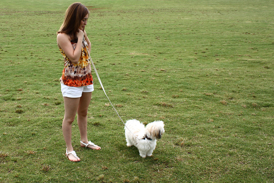 A cute young girl walking her dog on the grass : Free Stock Photo