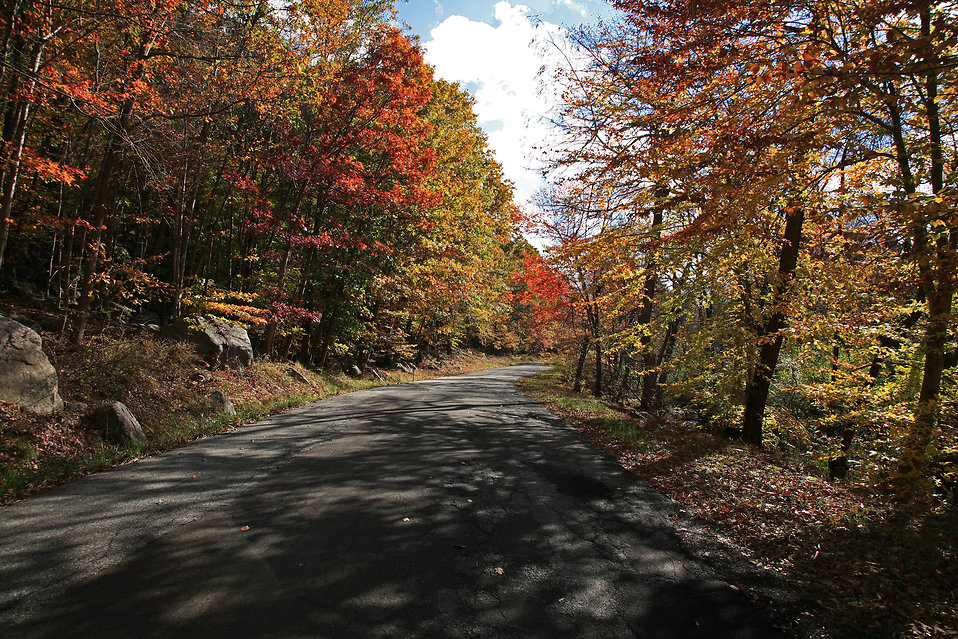 A mountain road on a fall afternoon : Free Stock Photo