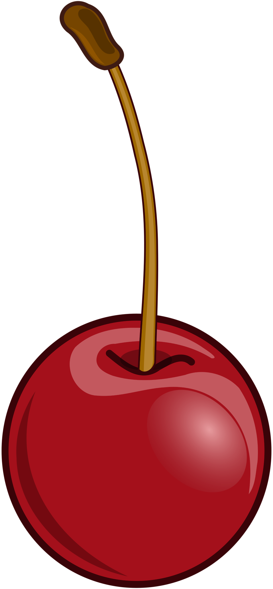 Illustration of a cherry : Free Stock Photo