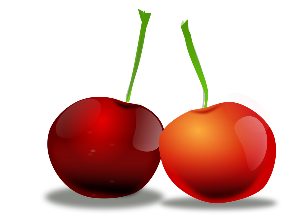 Illustration of cherries : Free Stock Photo