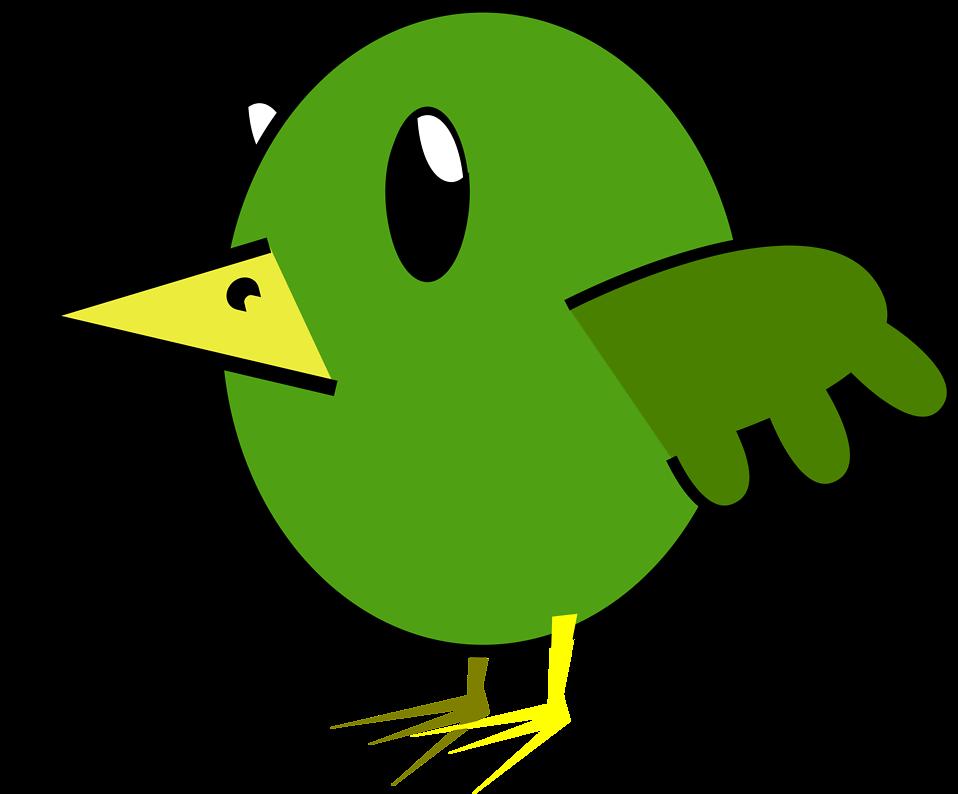 Illustration of a green cartoon bird : Free Stock Photo