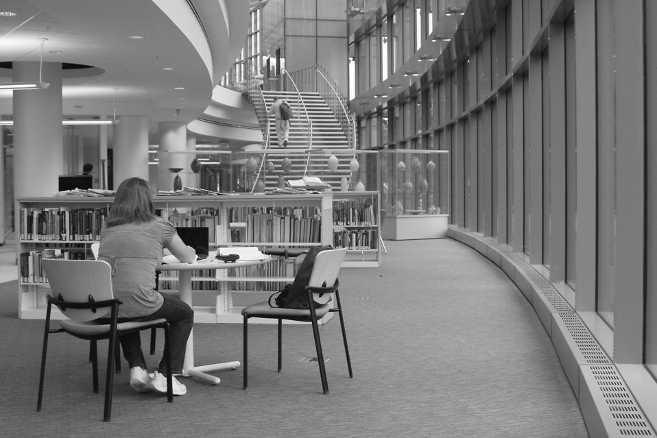A woman sitting in a library : Free Stock Photo