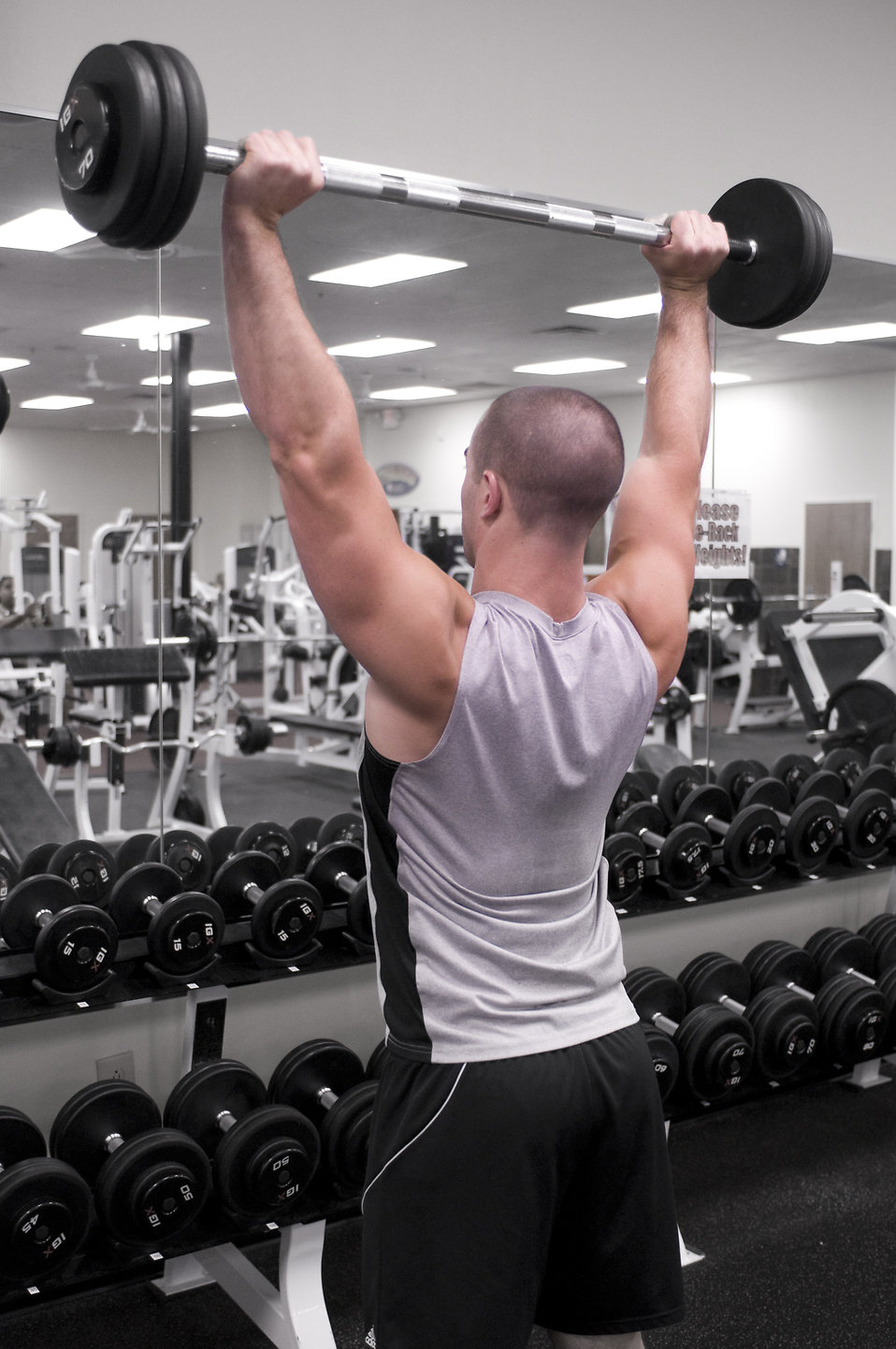 A healthy young man lifting weights in a gym : Free Stock Photo