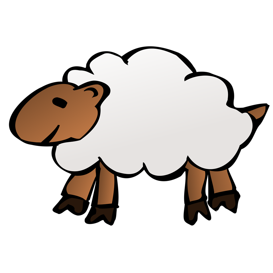 Illustration of a sheep : Free Stock Photo