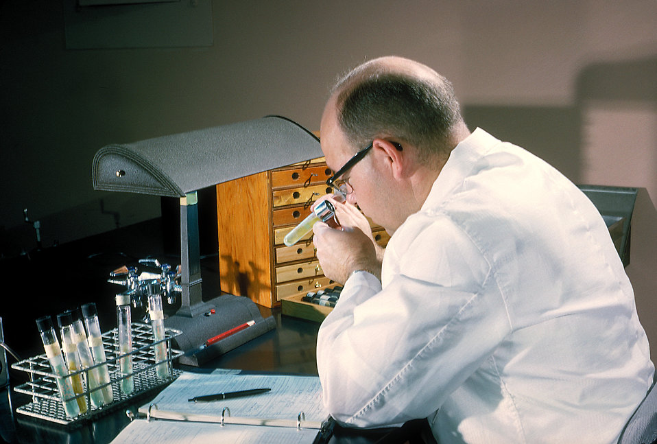 A laboratory technician taking notes : Free Stock Photo