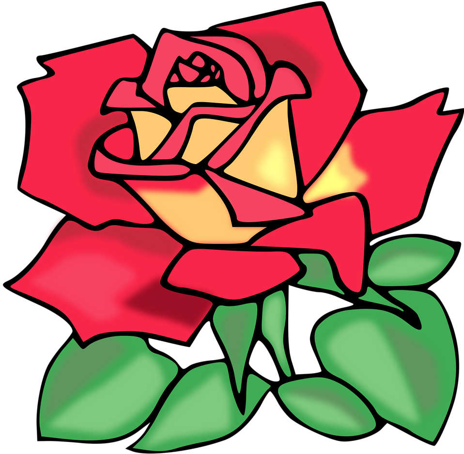 Illustration of a red rose : Free Stock Photo