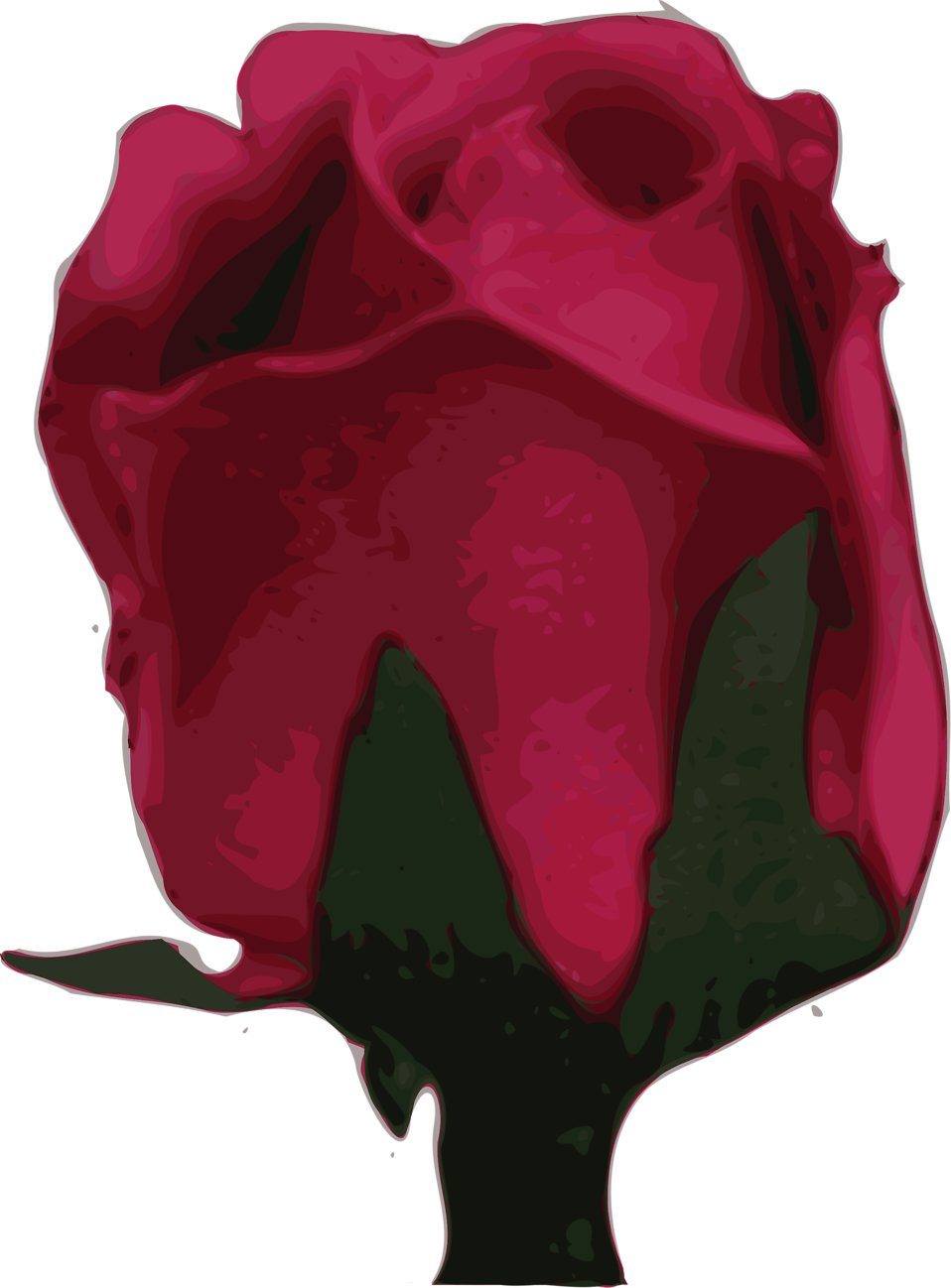 Illustration of a purple rose : Free Stock Photo