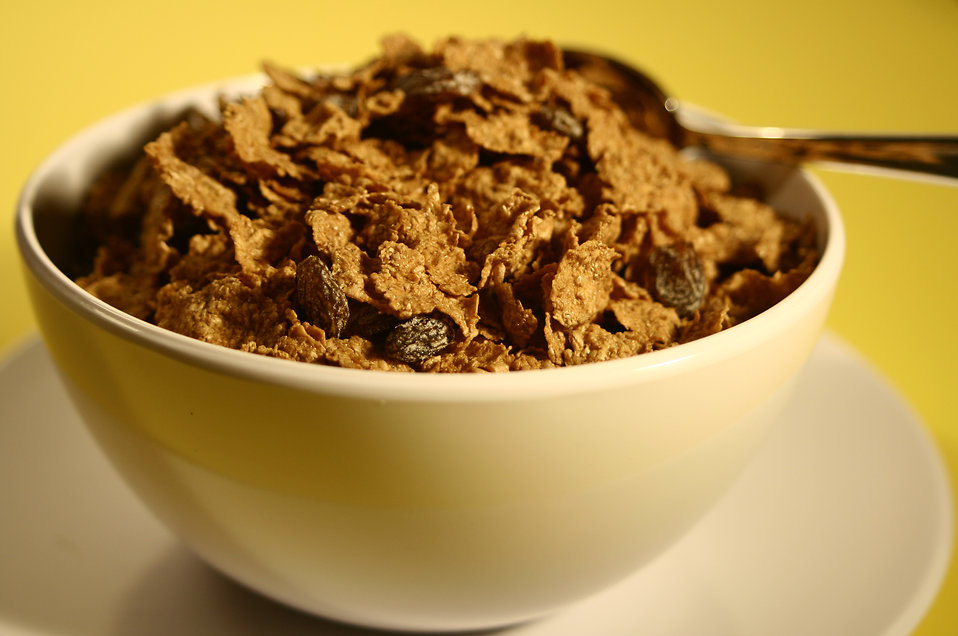 A bowl of cereal with raisins : Free Stock Photo