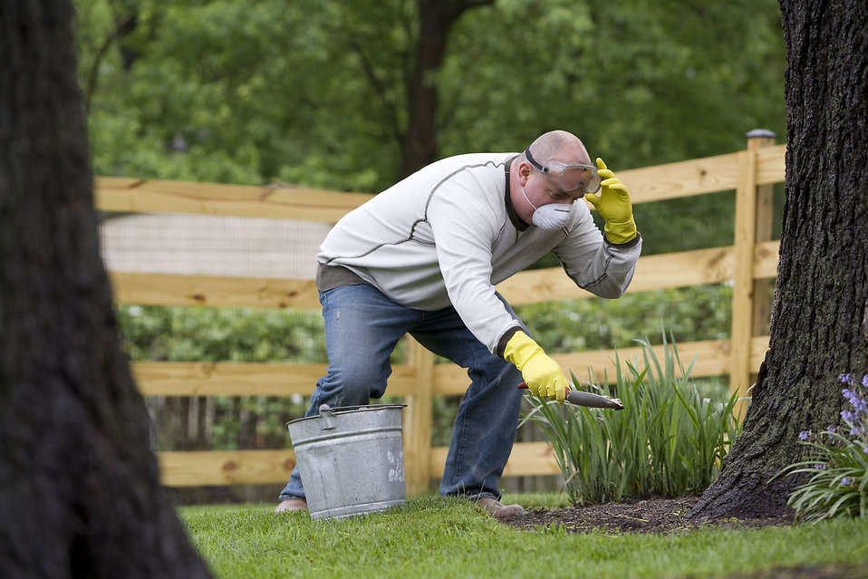 A man gardening outside : Free Stock Photo