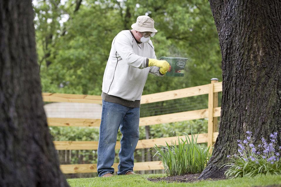 A man spreading fertilizer on his garden : Free Stock Photo