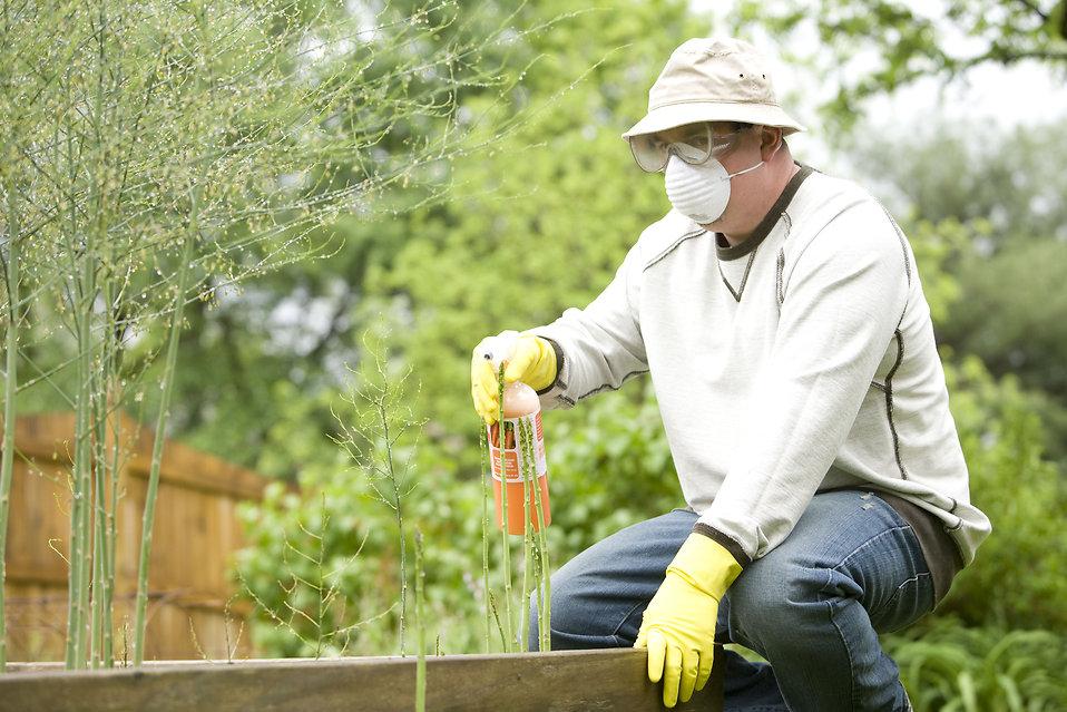 Pesticide Free Stock Photo A Man Spraying A Pesticide