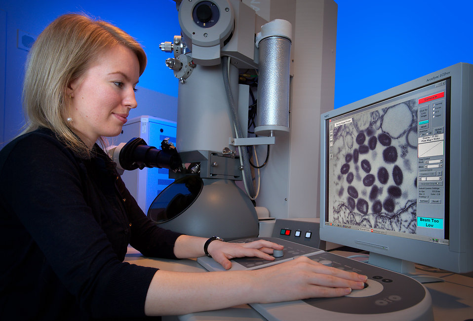 A woman using an electron microscope : Free Stock Photo