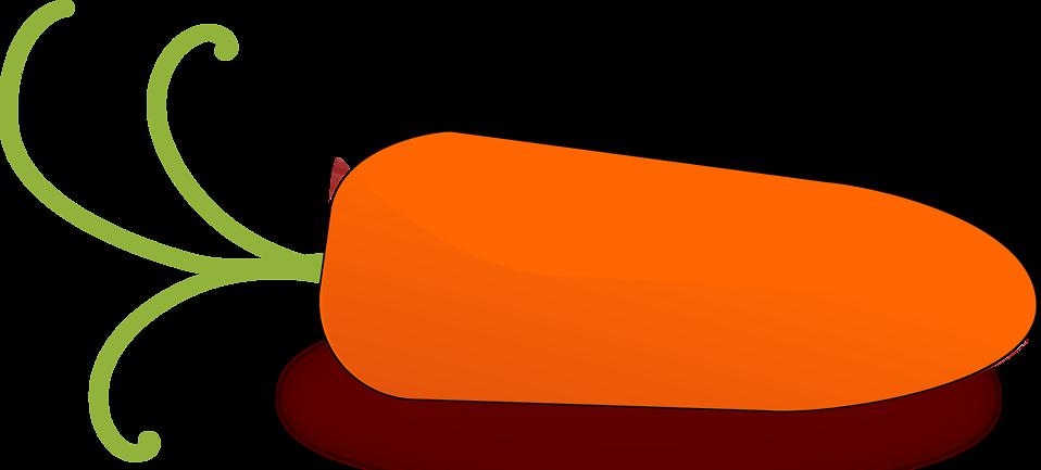 Illustration of an orange carrot : Free Stock Photo