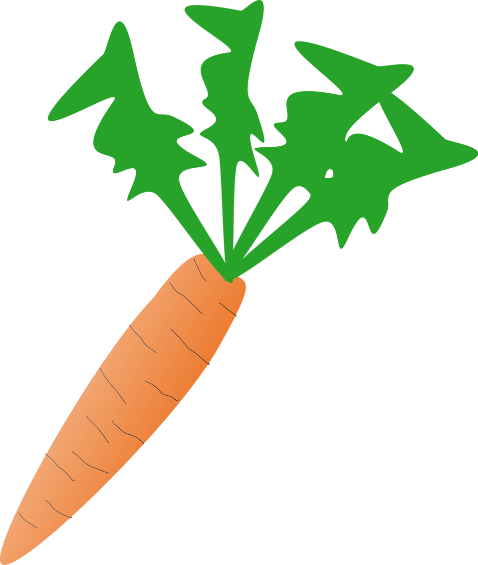 Illustration of an orange carrot : Free Stock Photo