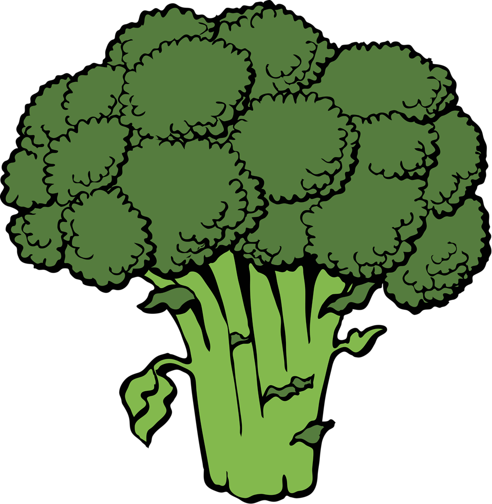 Illustration of broccoli : Free Stock Photo