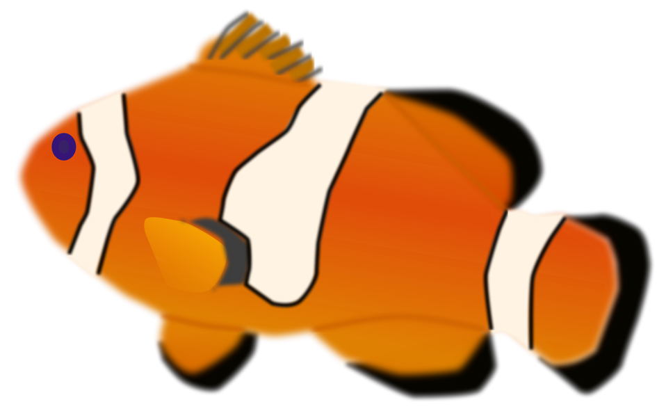 Illustration of a orange fish with a transparent background.