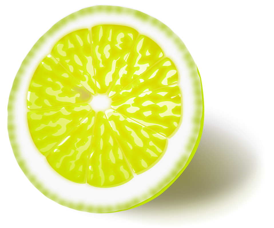 Illustration of a yellow lemon slice : Free Stock Photo