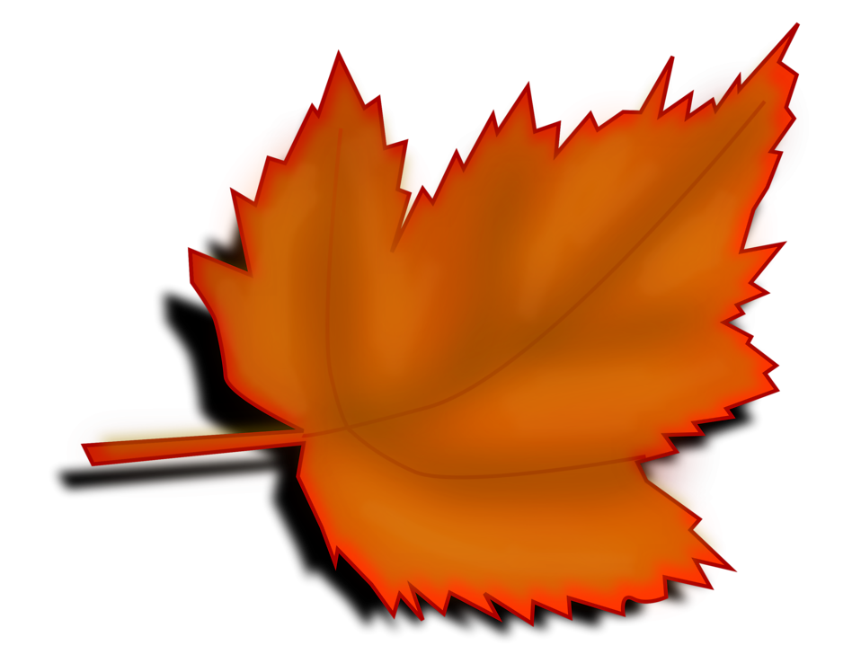 Illustration of an orange autumn leaf with a transparent background.
