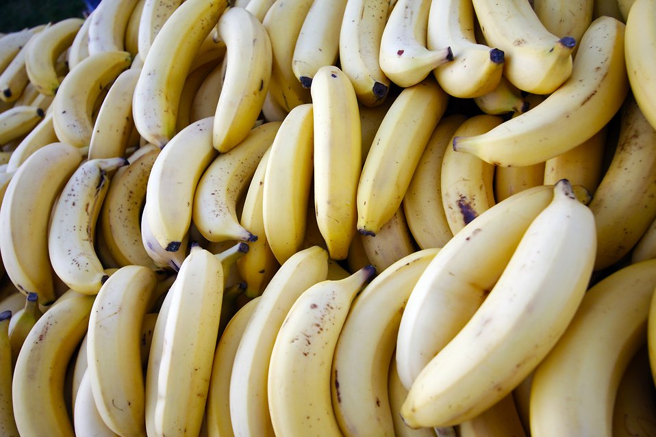 Rows of bunches of bananas : Free Stock Photo