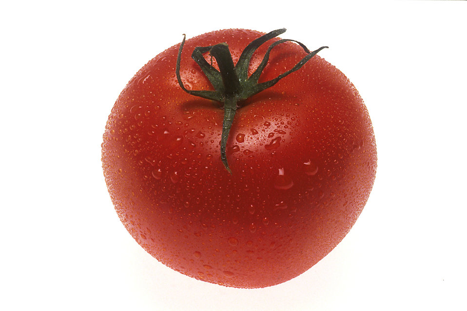 A whole red tomato isolated on a white background : Free Stock Photo