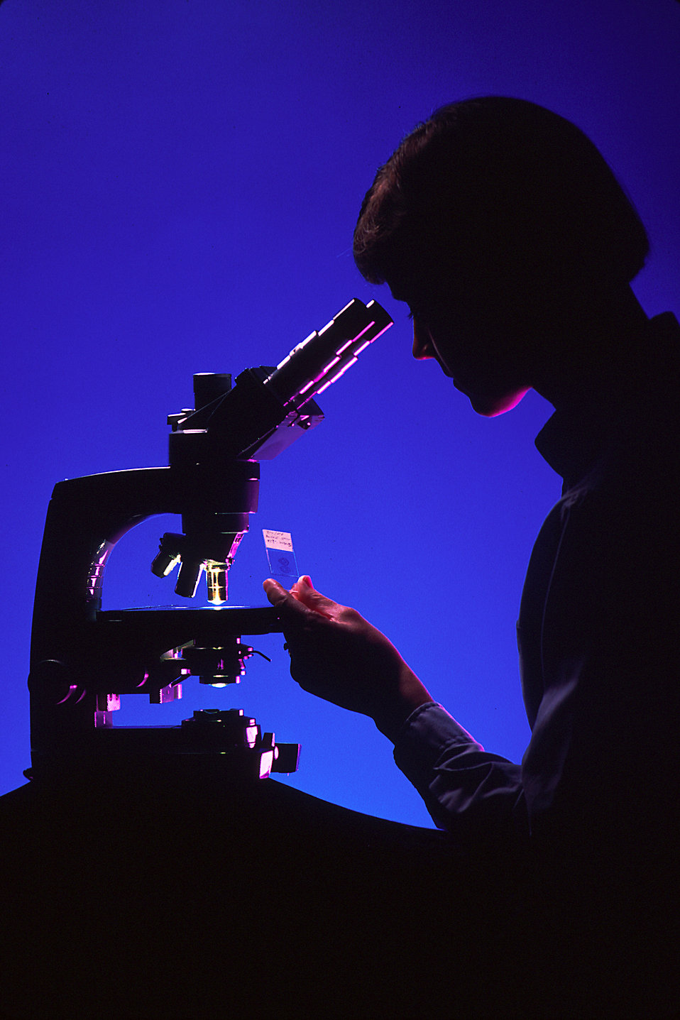 Silhouette of a woman using a microscope : Free Stock Photo
