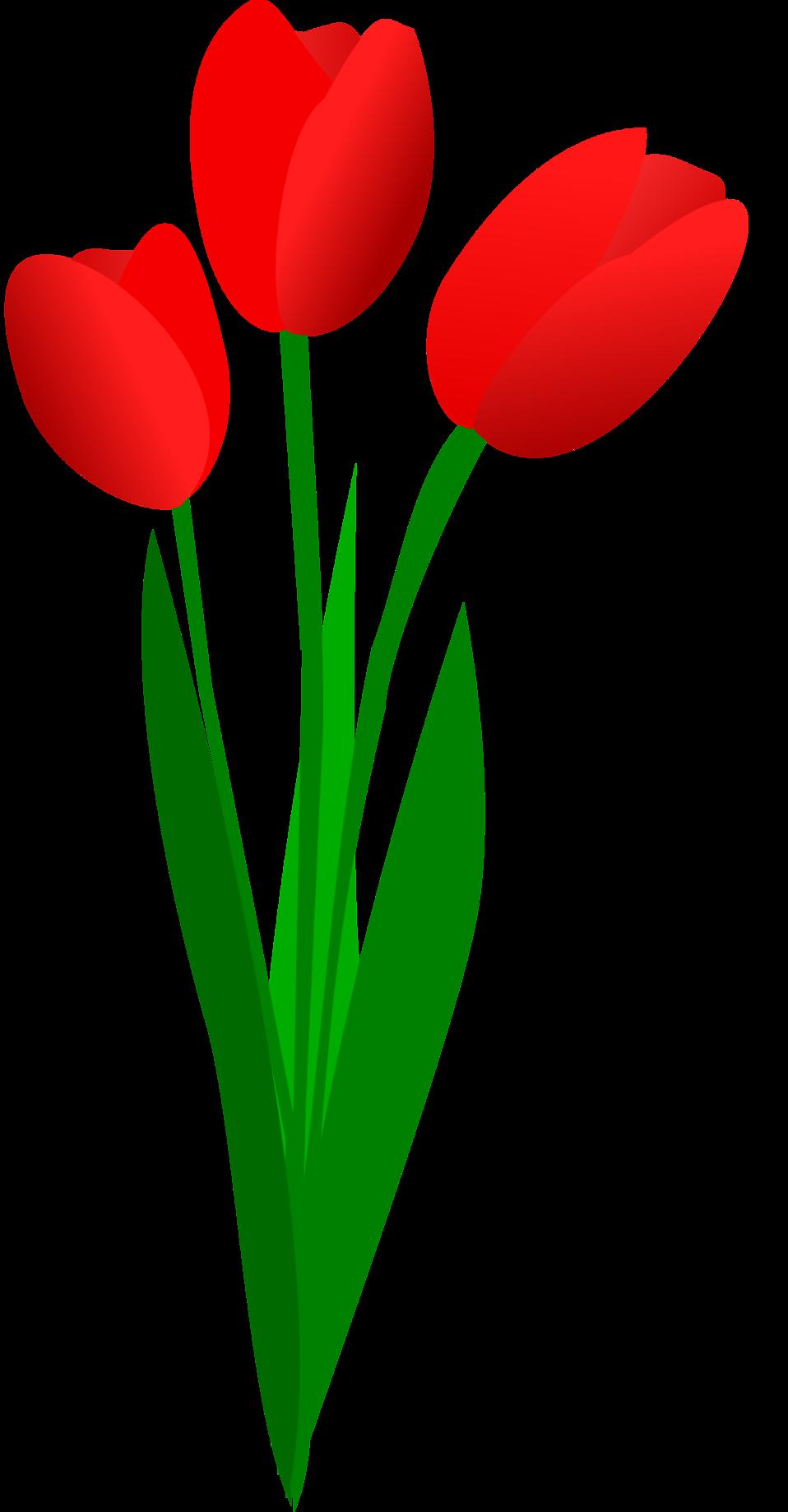 Znalezione obrazy dla zapytania bouquet clipart