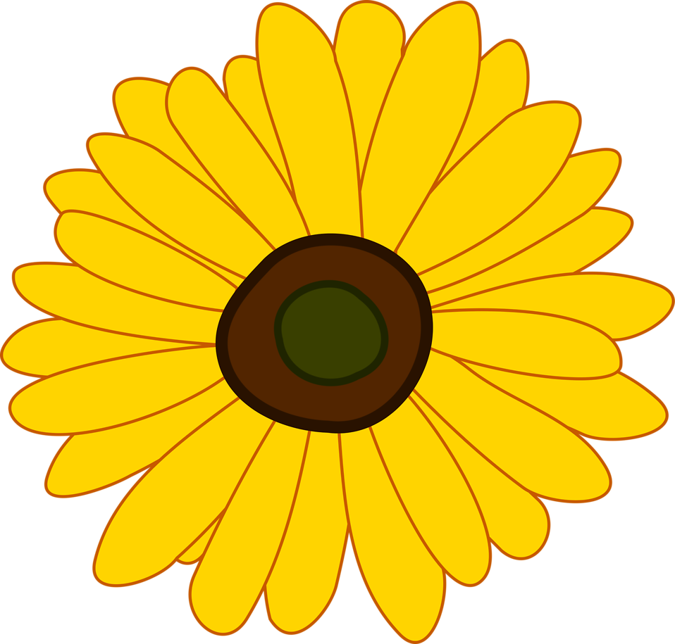 Illustration of a sunflower : Free Stock Photo
