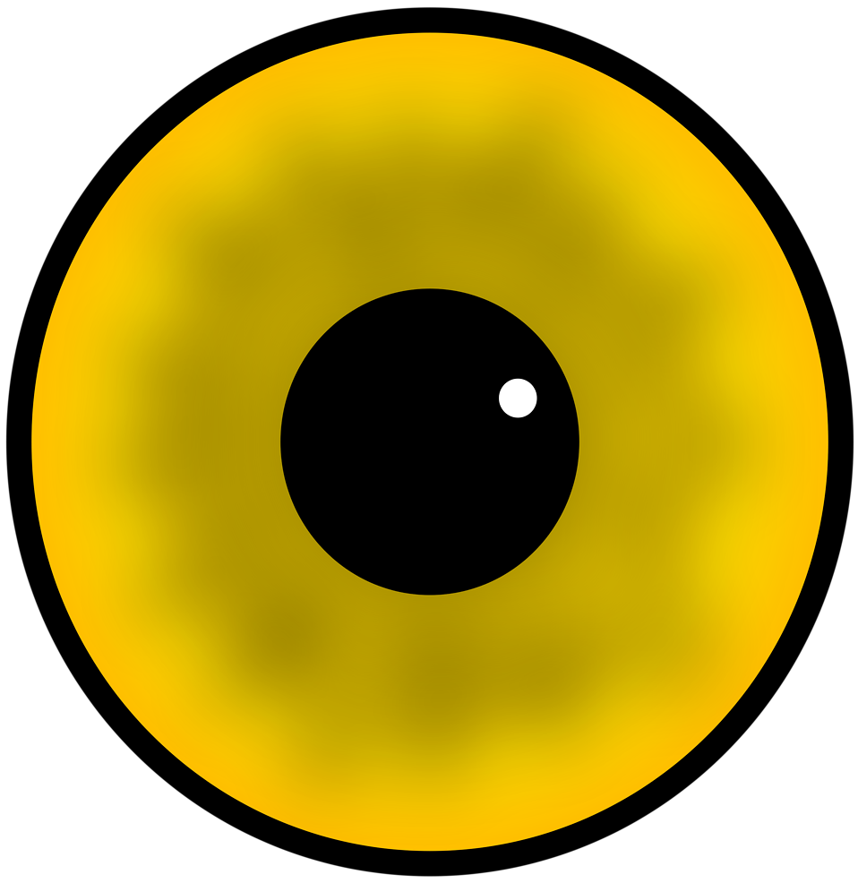 Illustration of a human eye : Free Stock Photo