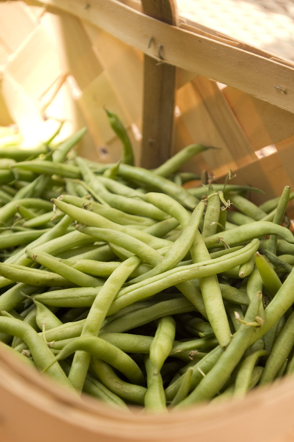 Fresh green beans in a basket : Free Stock Photo