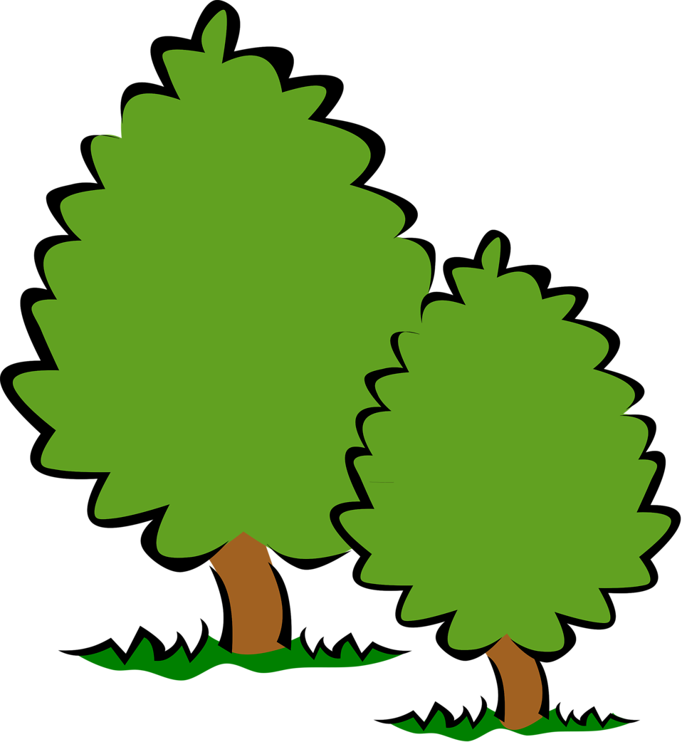 Illustration of trees : Free Stock Photo