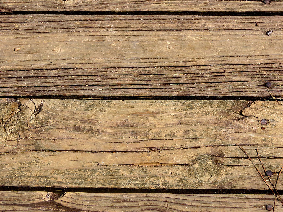 Close-up of a wooden texture : Free Stock Photo