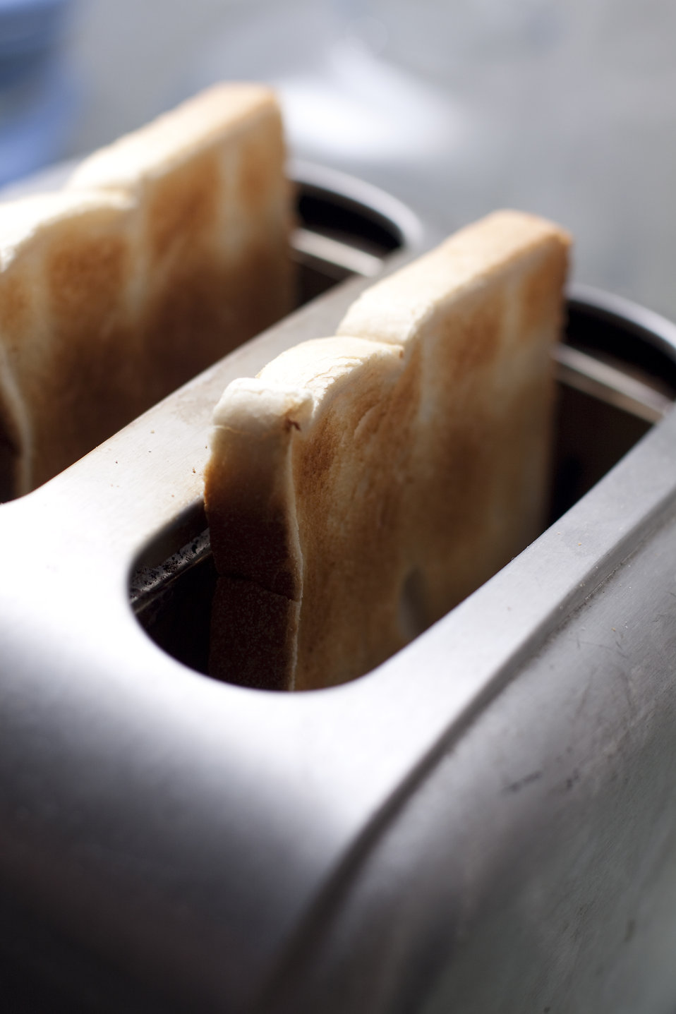 Toast in a toaster : Free Stock Photo