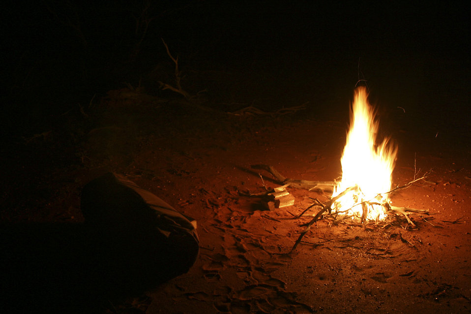 Campfire at night : Free Stock Photo